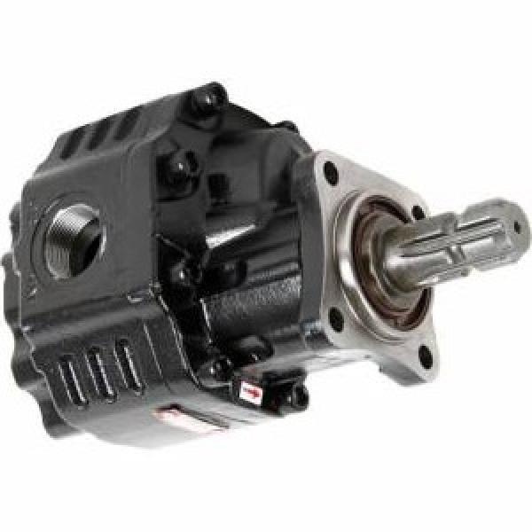 Pompa Idraulica Sollevatore CNH 5179729 per Trattori Laverda 3560AL L517 SerieTN