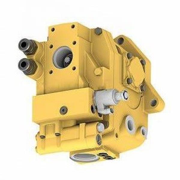 Cat Caterpillar Escavatore Idraulico Pompe & Motors Dis/Gruppo Manuale SENR3358