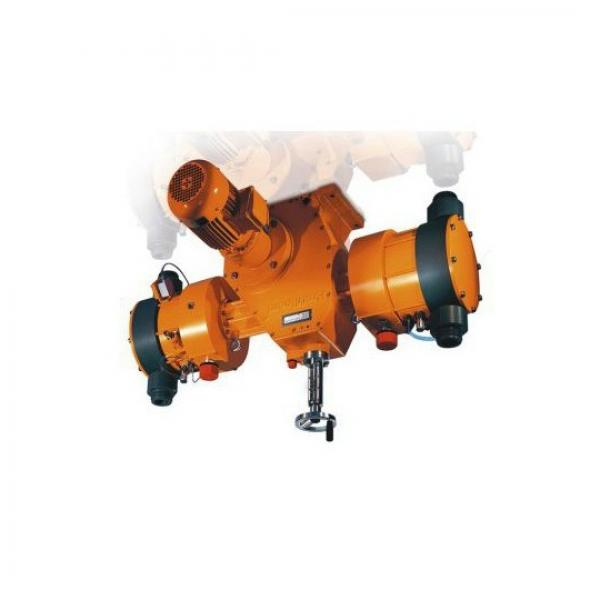 Pompa Idraulica Olio Gruppo 2 TFP200/14.5