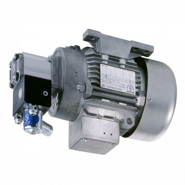 Enerpac ZU4204BB-Q Idraulico di Torsione Chiave Pompa 1gal Olio Pan Serbatoio