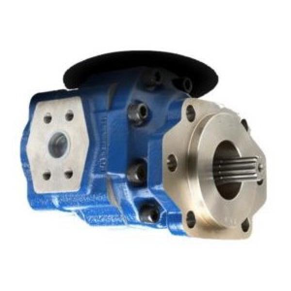 SPX Stone/FENNER, 2 gallone acciaio SERBATOIO, SERBATOIO, KR42, unità di potenza idraulica, pompa