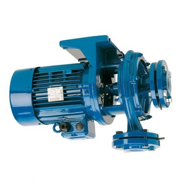 13HP HONDA BENZINA azionata dal motore pompa idraulica zz002404 gratuita nel Regno Unito e la consegna dell' Unione europea