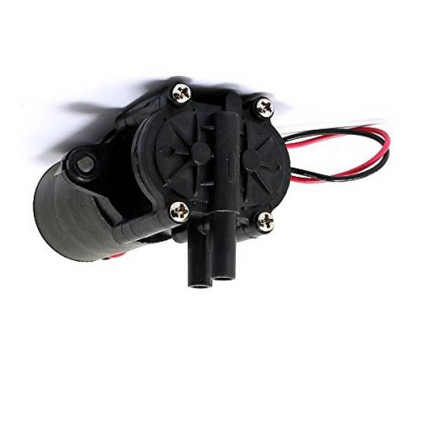 Extron Elettrico Pompa ad Ingranaggi 12V/X2015