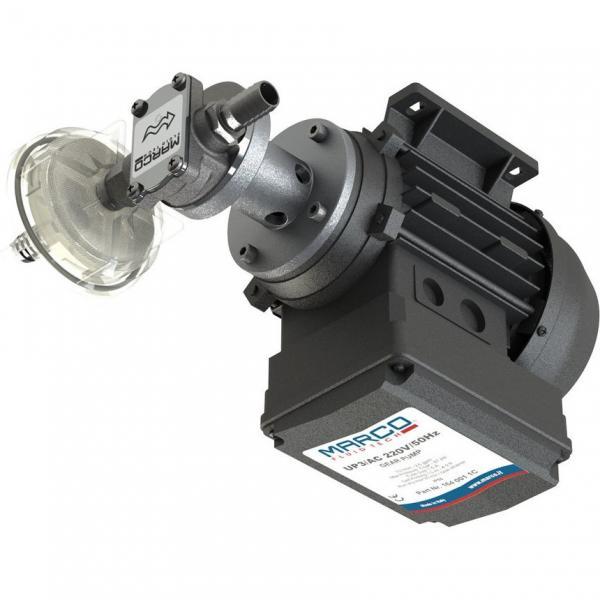 Pompa Idraulica ad Ingranaggi Gruppo 2 Standard,Albero Conico,11,4 cm3 - 80965