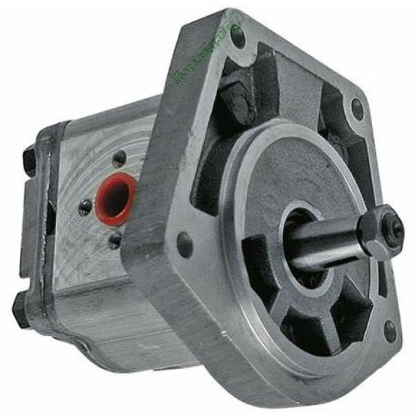 8L 12V Pompa Idraulica Gruppo Oleodinamica Doppio Effetto 3200 PSI