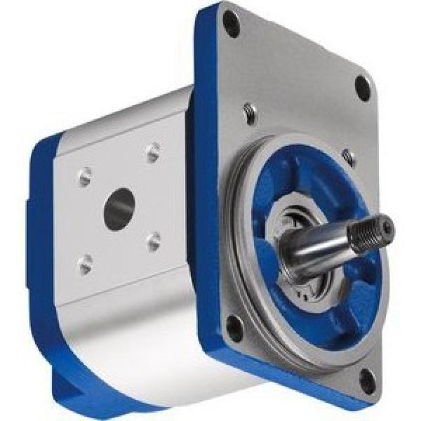 Doppio Pompa Idraulica Bosch 0510665381 per Case IH / Ihc C 55 64 70 ,Cs 78 86