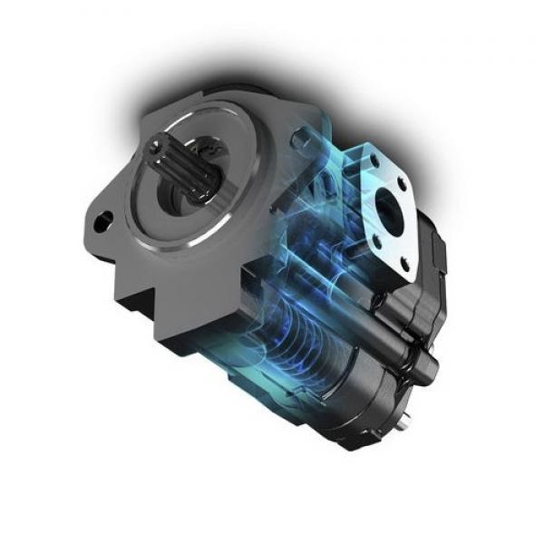 Orsta C40-3 L Pompa Idraulica Doppia-Idraulica Tgl 10859 Idraulica-Pompa