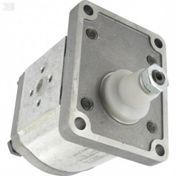 Pompa Idraulica BG2 6 - 30 Ccm Sinistra O Senso Orario - con o Senza Flangia