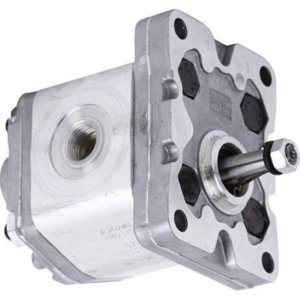 Motore Pompa Idraulica Rexroth D-89275 Elchingen